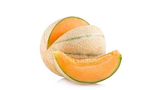 Канталупа дыня: фото, описание, размер, особенности выращивания   353x627